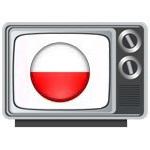 Polnisches Fernsehen in Deutschland schauen